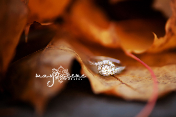 artistic-wisconsin-engagement-pictures