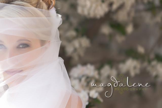 wisconsin-wedding-photographer