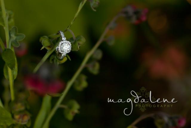 wedding-photographers-door-county