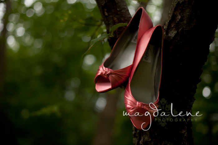 wedding photographers in green bay wi