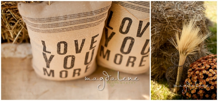 Wisconsin Wedding Photographer love you more