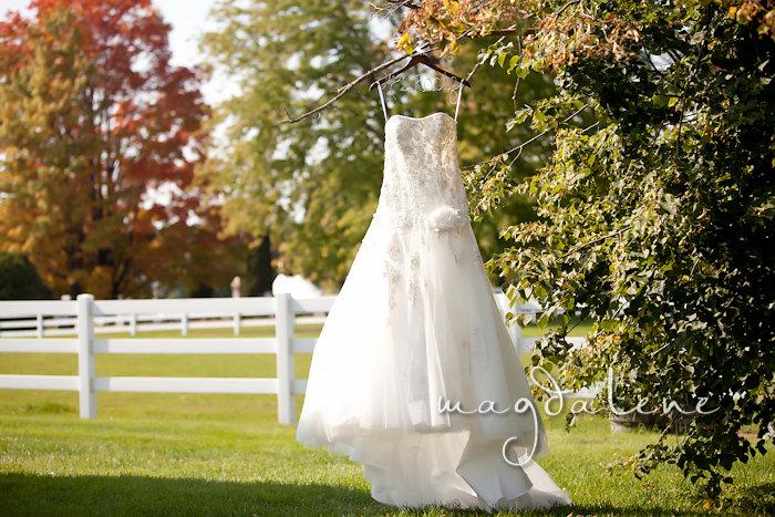 Wisconsin Wedding Photographer wedding dress