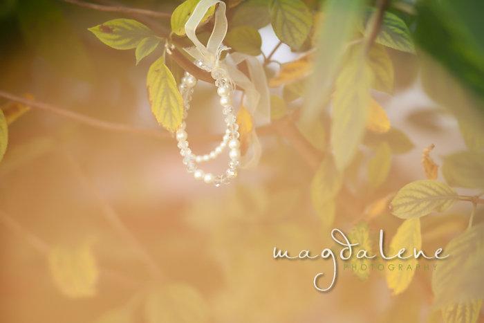 Wisconsin Wedding Photographer jewelry