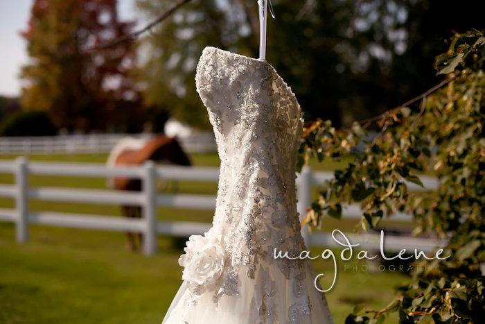 Wisconsin Wedding Photographer wedding dress horse