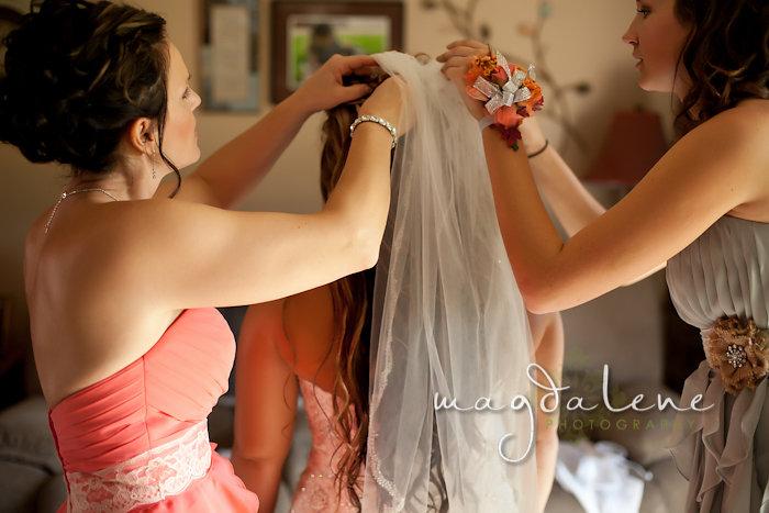 Wisconsin Wedding Photographer bride veil