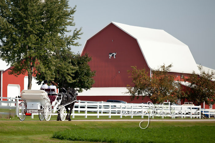 Wisconsin Wedding Photographer horse drawn carriage barn