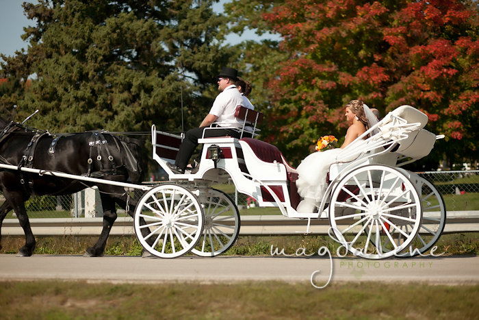 Wisconsin Wedding Photographer bride in horse drawn carriage