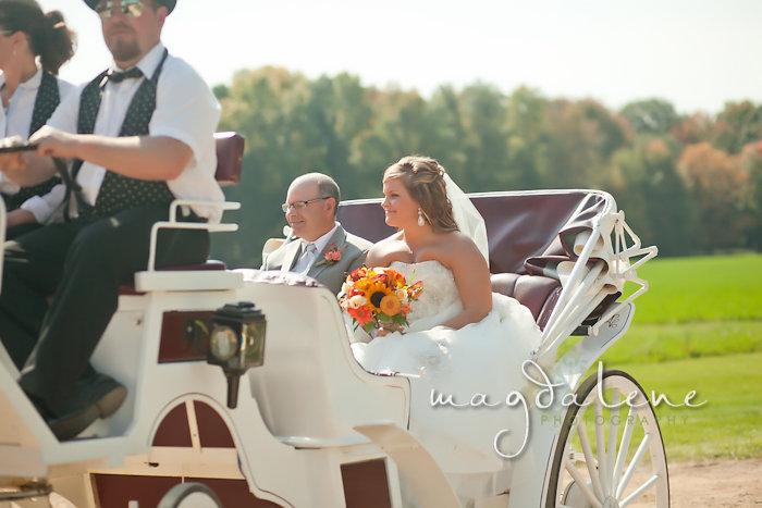 Wisconsin Wedding Photographer bride carriage