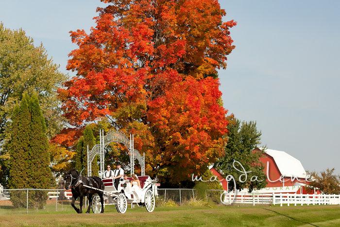 Wisconsin Wedding Photographer horse drawn carriage venue
